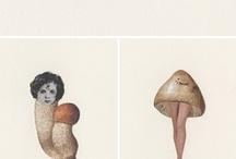 illustration / by dileodile