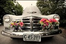 Cool Wedding Ideas / Random ideas for weddings from dresses to cakes to entertainment.