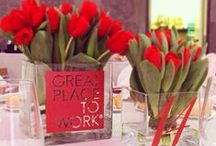 Great Place to Work / Vetrya Great Place to Work 2015