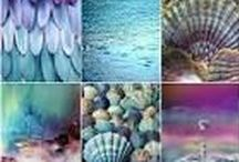 STUNNING SHINING SEASHELLS / SEASHELLS , FASHION