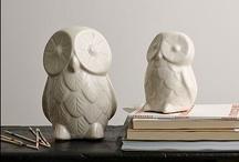 owls / by Nicole Galletta Gibson