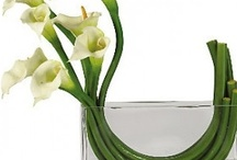 Florals for Decor / by Linda Crawford