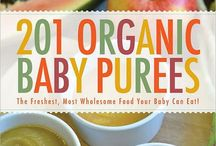 baby/toddler food / by Nicole Galletta Gibson