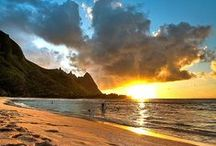 Love the Beach / by Jeanne Hening