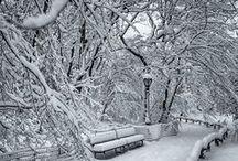 Let It Snow!! / by Jeanne Hening