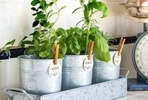 Herb Gardening / Whether you want to use herbs to cook with or for medicinal purposes. Herb gardening will benefit your home, pets and farm animals. Learn fun ways grow hers and a bed or in small containers.