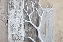 decoration from nature