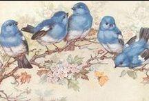 ptaki i motyle