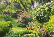GardenDiy