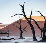 Namibia Reisen / Namibia Reisen vereinen unvergessliche Eindrücke von Natur- und Tierwelt, besondere Begegnungen in kleinen Dörfern der Einheimischen und neue Erfahrungen über Traditionen und Geschichte in einem Afrika Urlaub! Ganz gleich, ob es sich um eine Rundreise oder einen individuell gestalteten Trip handelt - Namibia bietet dir ein außergewöhnliches Urlaubserlebnis und überzeugt dich von der Schönheit Südwestafrikas.