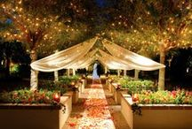 Las Vegas Wedding Venues / Las Vegas has such a wonderful and limitless variety of wedding venues: from Country Clubs, to Lakeside venues. You can go to Paris, New York or Caesars Palace all in one place.  This is not your mother's Vegas anymore. Come and see what Las Vegas really has to offer.