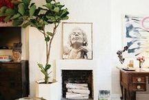 home | house plants