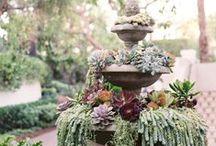 {garden} / by Katie Cowles