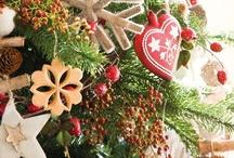Christmas / by Kristy Schalk