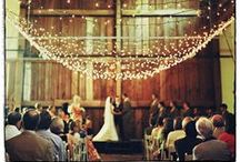 Wedding Decor / by Capsule
