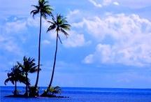 sea,beach