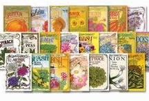 Vintage Seed Packets / by Jan Sherman