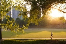 Atlanta Things to Do / Some of our favorite Atlanta activities and things to do! Find more on our blog: http://thingstodo.viator.com/atlanta / by Viator.com