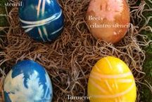 Easter / Decorating ideas for Easter - including how to dye eggs with  toddler! Check out the full how to on MollySims.com http://bit.ly/1iE9N6k / by Molly Sims