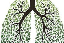 COPD and Asthma / by Eldridge Pearsall