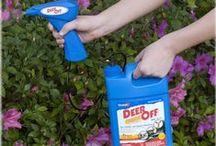 Havahart® Animal Repellents / Prevent little critters from eating your flowers, vegetables and bird feeder seeds with a Havahart® animal repellent! We offer animal repellents that effectively control many different kinds of critters, including squirrels, deer, rabbits, cats, and dogs. Check out our pins to see which Havahart® repellent can help keep the critters out of your yard!