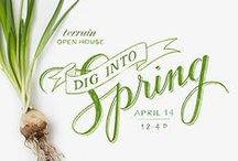 Spring Marketing / Marketing tips, tools, and designs for spring!