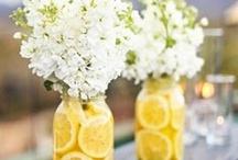 Flowers! / by Marshmallow Ranch ~ Ginny McKinney
