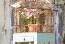 bIRd - cAGES & hOUSEs / by kim leahy