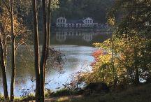 Balade à l'étang / Petites photos que je prends au étangs de Commelles