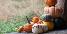 fall. / {Fall/Autumn Thanksgiving Decor, Crafts and Recipes}