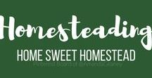 Home Sweet Homestead / My husband and I purchase of a 10 acre property in Arkansas which has sparked my interest in Homesteading. We are ready for a new adventure into more self-sufficient living. #garden #gardening #livestock #simple #living #homesteading #homestead #farm #goats #alpaca #farming #vegetables