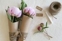 Gift Ideas »