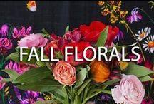 FALL FLORALS / Fall florals... jewel tones. / by YUMI KIM