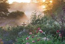 English House & Garden