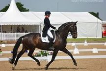 Somerford Park Premier League Dressage / Somerford Park, Cheshire. May - 2016.
