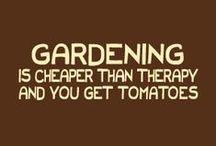 Gardening / by Kristine Remer