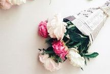 Nature   Flowers / Todo tipo de flores: Para decorar la mesa, para celebraciones, ramos de novia o simplemente instantáneas tomadas en el campo...
