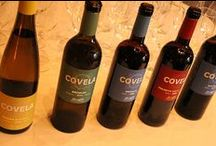 WINE & SPIRITS / I've pinned products here that I've tasted, enjoyed and want to share.