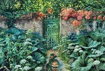 Ijung Garden / by Beata Ce