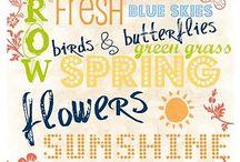 Fonts & Printables / by Cheri Johnson