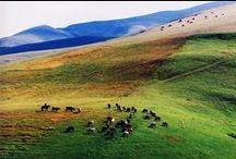 Armenia / by Beata Ce