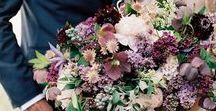 Fiolet Florals