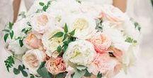Peach & Pink Florals