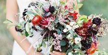 Burgundi Florals