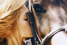 For the Love of Horses / by Chelsey Somohano