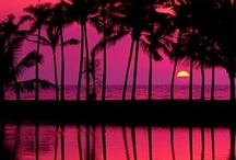 Hawaii / For the love of all things Hawaiian, I will be there someday... / by Ana B