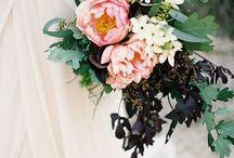 Wedding / by Katey Nicosia