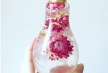 light bulb projects