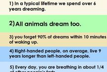 Interesting facts✏️