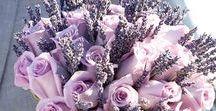 LAWENDOWY ŚLUB WESELE lavender wedding ideas / Galeria inspiracji na pachnący lawendą ślub w delikatnych odcieniach fioletów.  Suknie ślubne, kwiaty, bukiety, dekoracje.